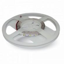 LED-Streifen grün SMD3528 60 LED/m, 5m Rolle
